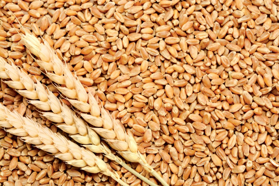 Govt set to import 0.2m tonnes of wheat from Russia