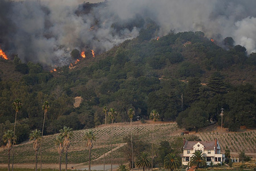 An out of control wildfire approaches Gundlach Bundschu winery. (Reuters Photo)