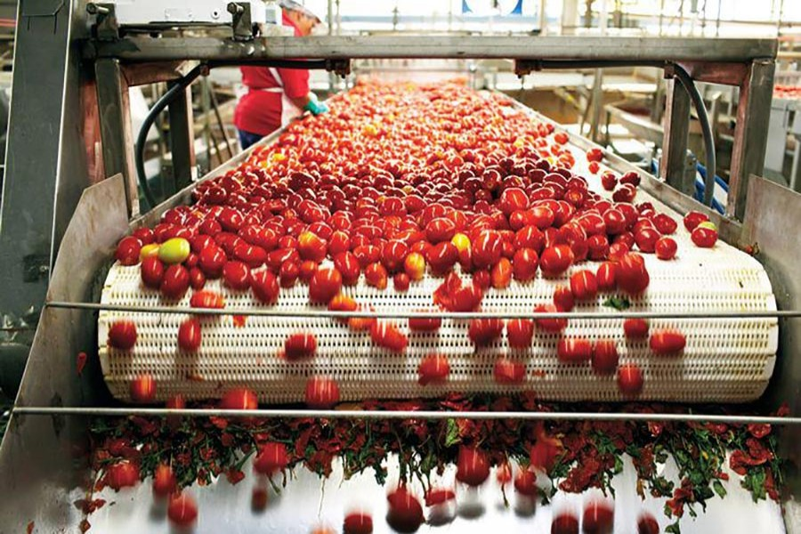 Agro-processing sector grows far below its potentials