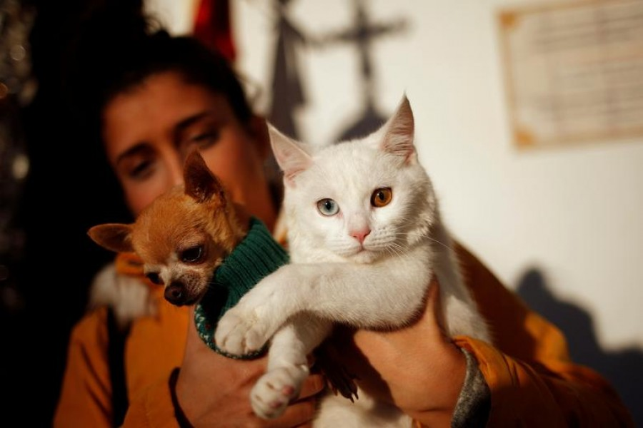 A woman poses with her dog and cat in the neighborhood of Churriana, in Malaga, southern Spain — Reuters/Files