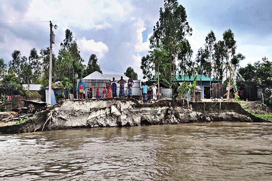 Villagers remain the silent witnesses to the fury of the mighty Jamuna on Saturday as it is devouring houses, cropland and whatever else on the river bank at Pukuria under Chowhali upazila of Sirajganj — Focus Bangla