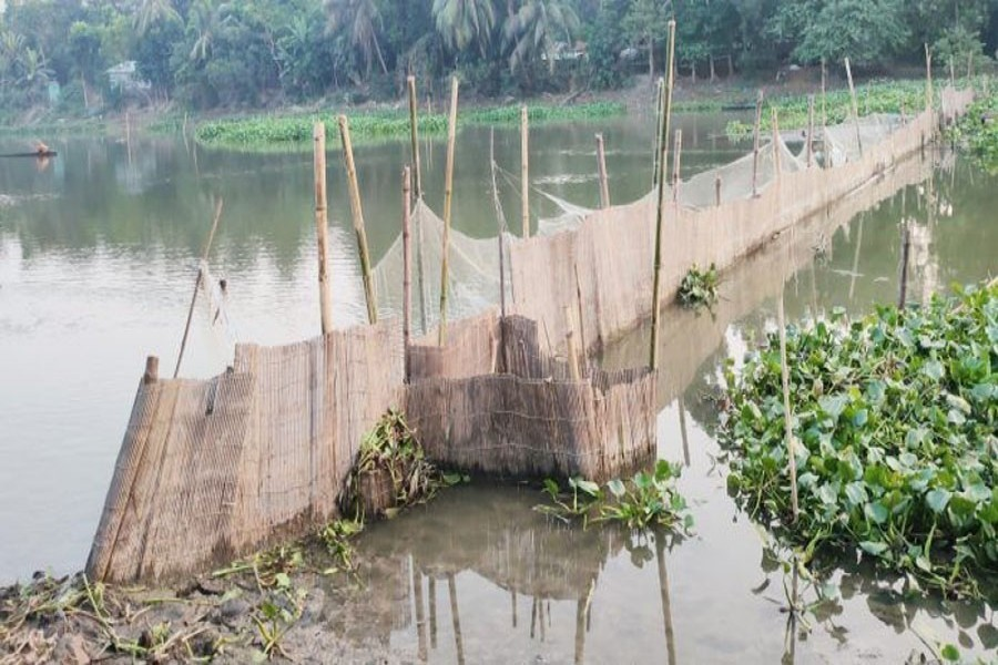 An enclosure set illegally for fishing in the Chitra River in Jashore's Bagharpara — FE Photo