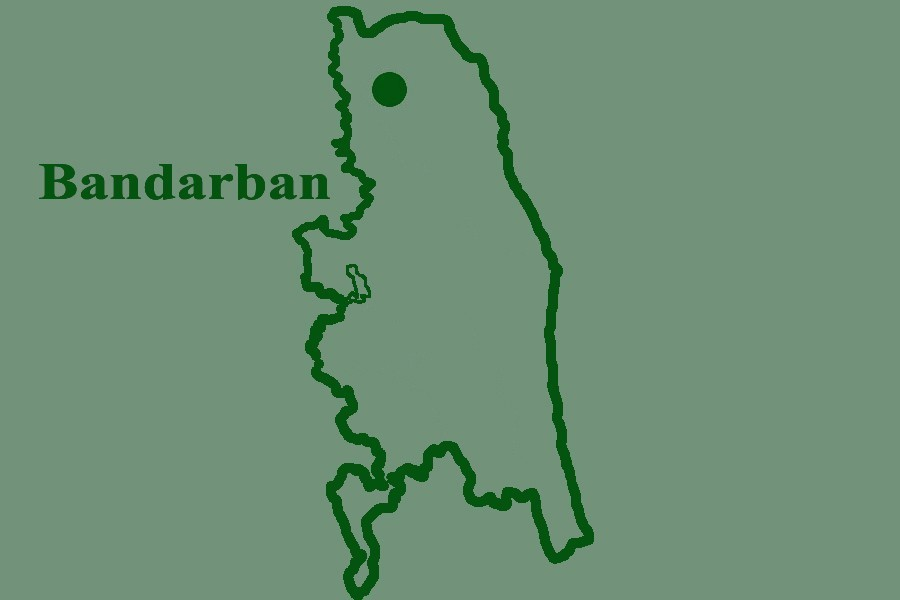 Two teens killed in elephant attack in Bandarban