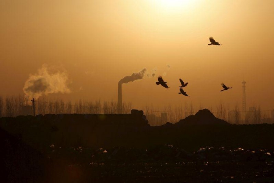Birds fly over a closed steel factory where chimneys of another working factory are seen in background, in Tangshan, Hebei province, China on February 27, 2016 — Reuters/Files