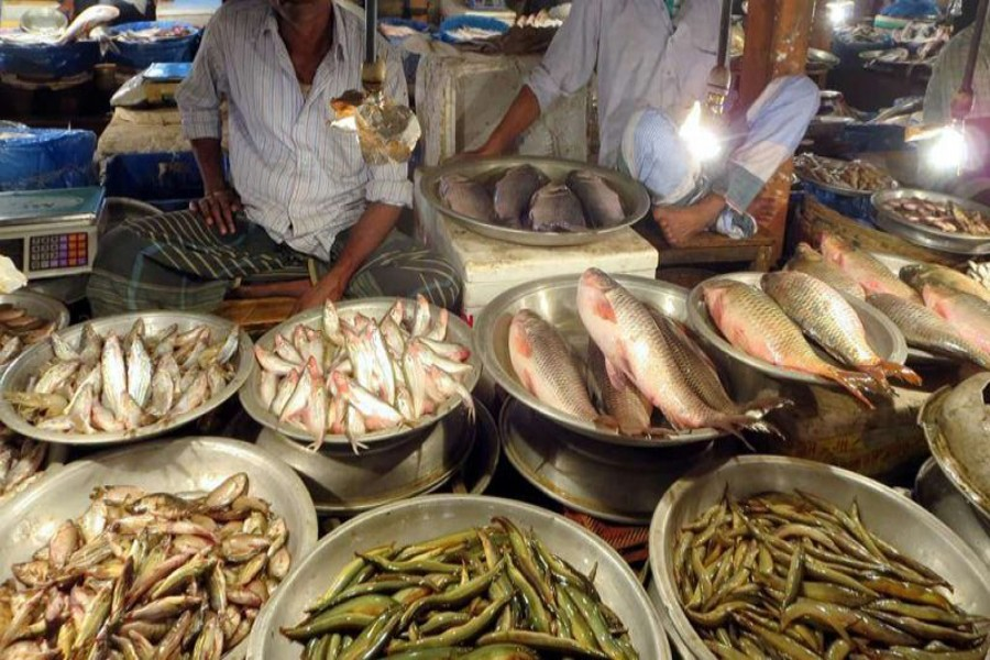 Fish gets dearer in Dhaka, raising woes of commoners