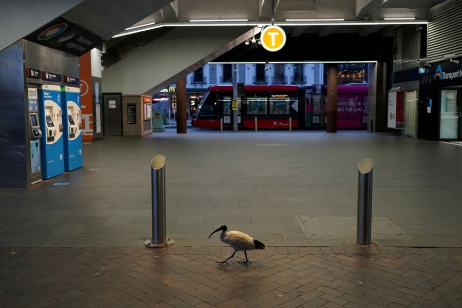 A lone bird walks past the quiet Circular Quay train station during a lockdown to curb the spread of a coronavirus disease (COVID-19) outbreak in Sydney, Australia on July 28, 2021 — Reuters/Files