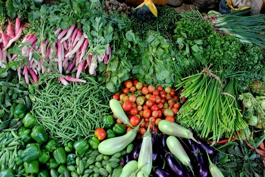 Vegetable exports may rebound this fiscal year