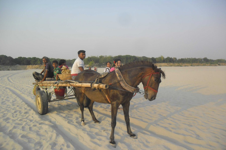 About 25 km of Gorai turns  into sandy land in Magura