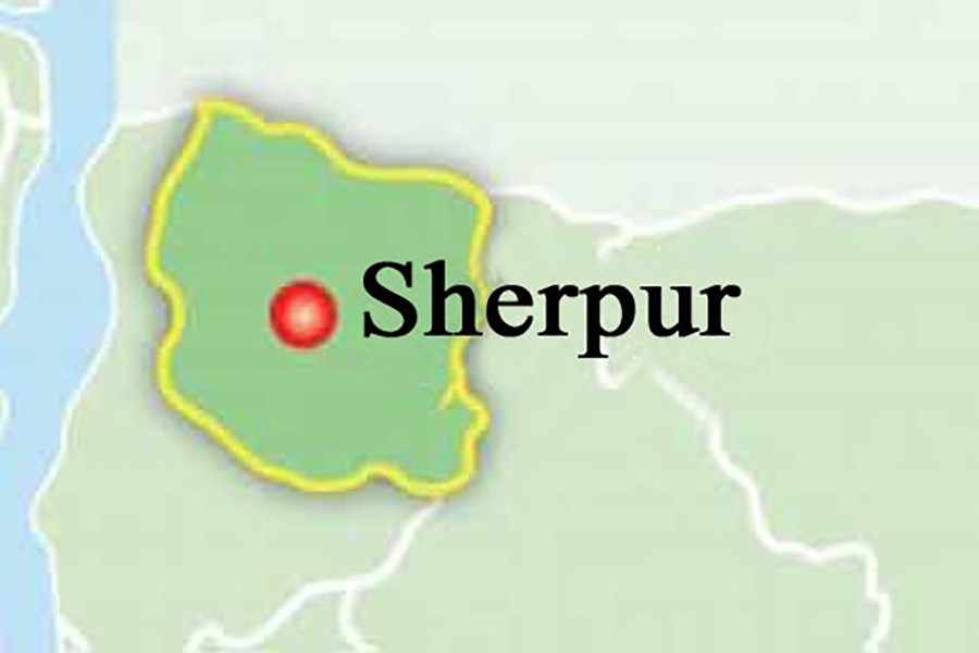 Sherpur police arrest one absconding accused