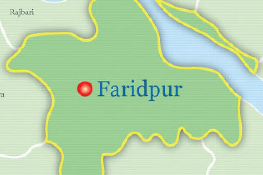Miscreants stab college student to death in Faridpur