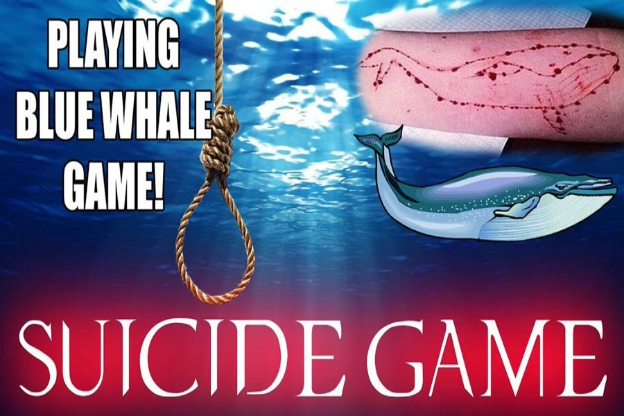 Please, stop the Blue Whale game