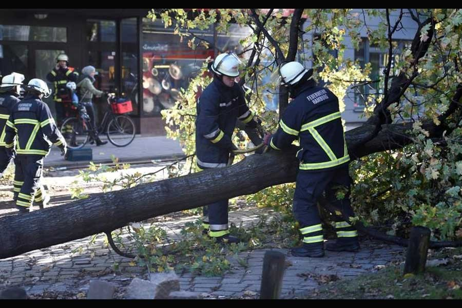 "Frefighters work on a tree that fell during stormy weather caused by a storm called ""Herwart,"" in Hamburg, Germany October 29, 2017. (Reuters photo)"