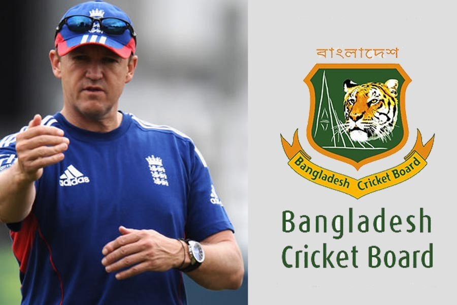 Andy Flower turns down Tigers' coach position