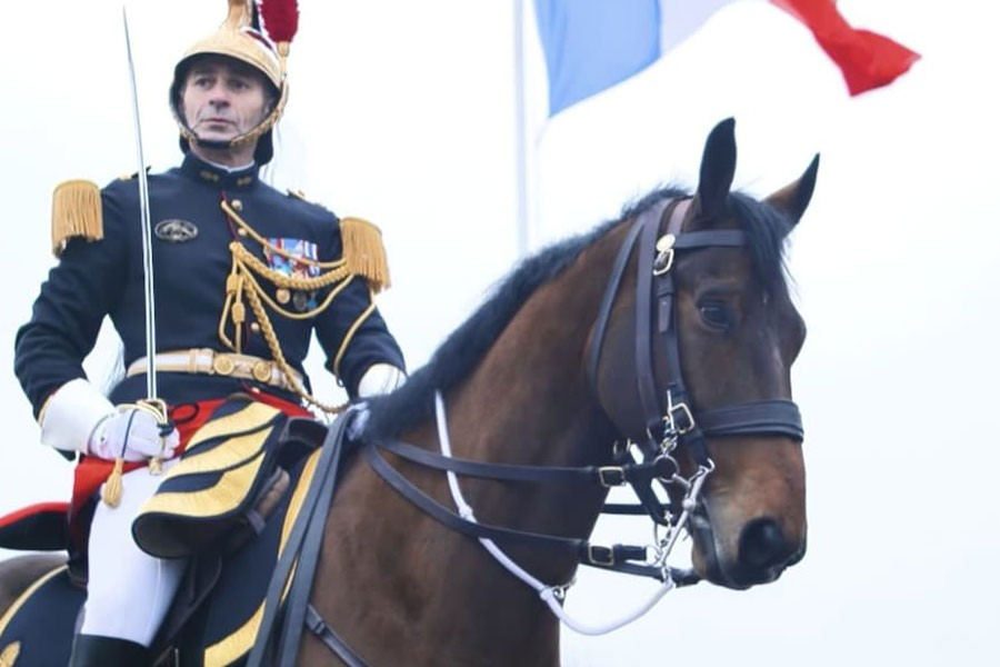 After Brigitte's panda France engages in 'horse diplomacy'