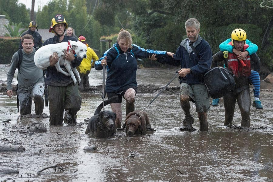Emergency personnel evacuate local residents and their dogs through flooded waters after a mudslide in Montecito, California, US on Tuesday. - Reuters photo