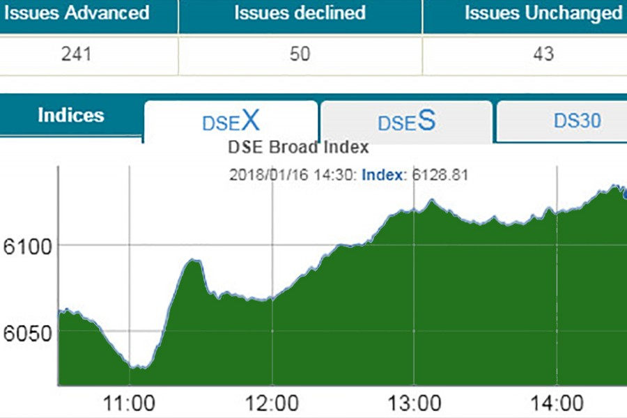DSE, CSE rebound strongly