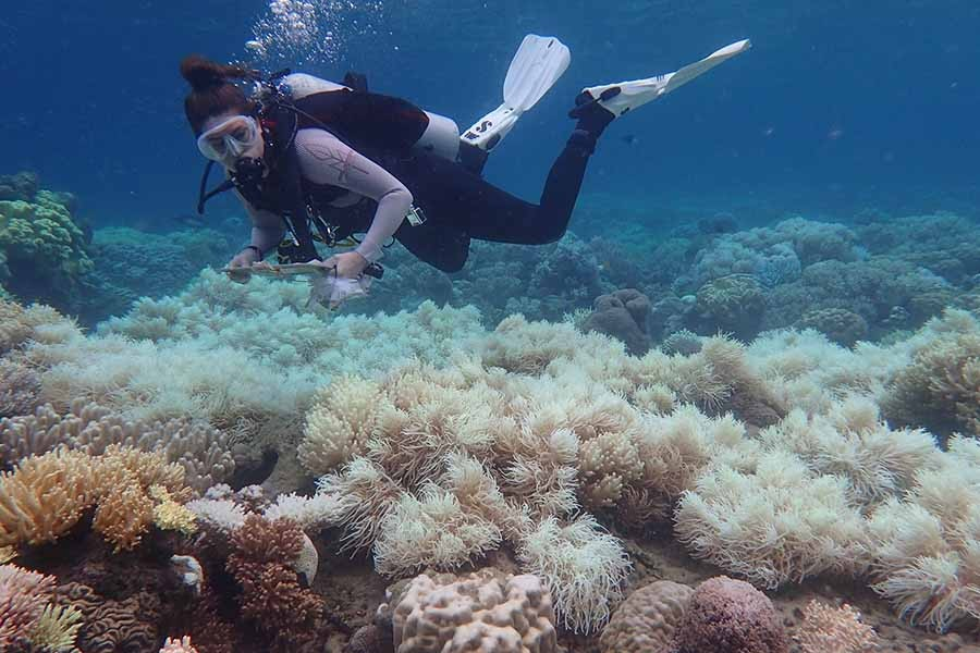 Australia's $40b tourism industry under threat of climate change