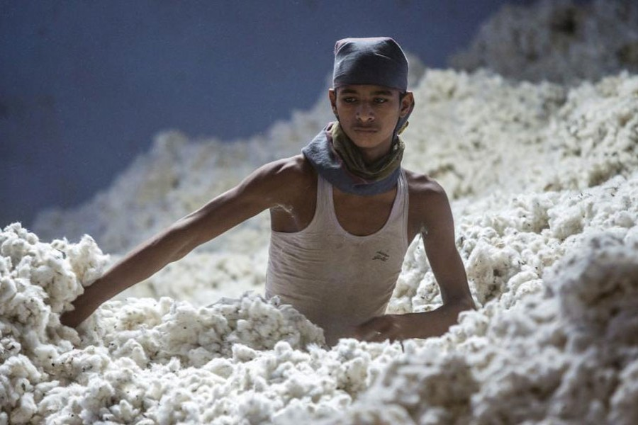 Cotton import taking a heavy toll
