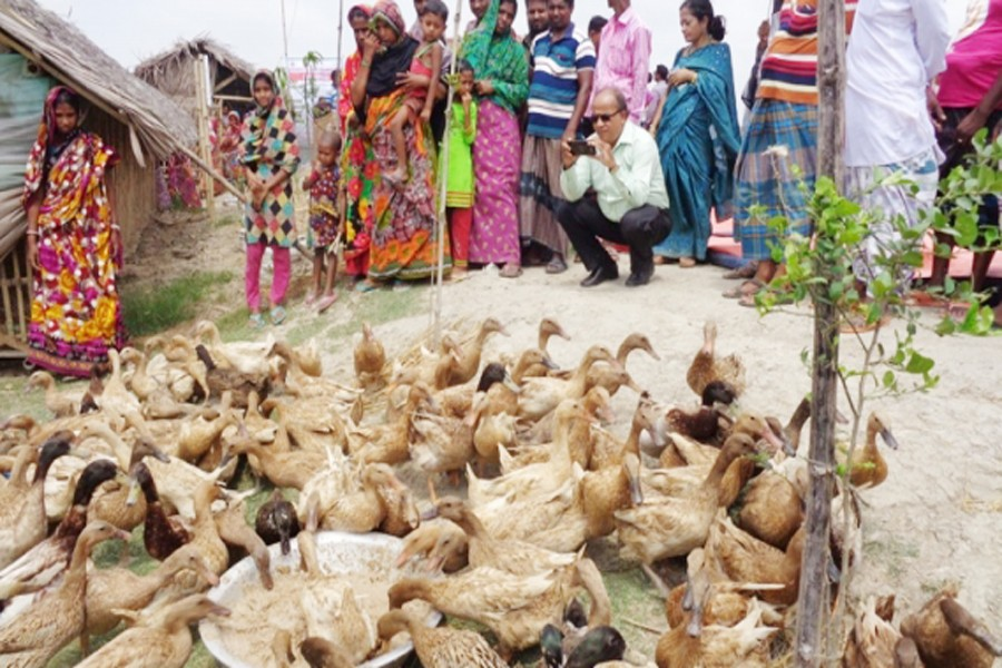 Revving up rural economy to beat poverty