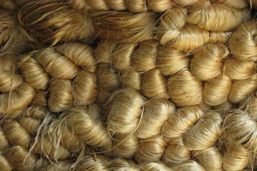 Export of jute, jute goods witness steady growth