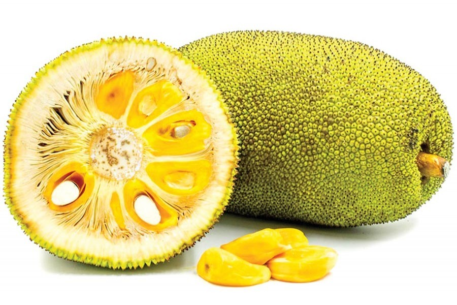 Processed jackfruit products now on export list