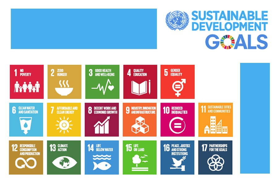 Taking up the challenge of SDGs implementation