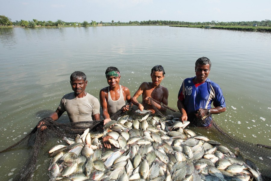 Fishery deserves greater attention
