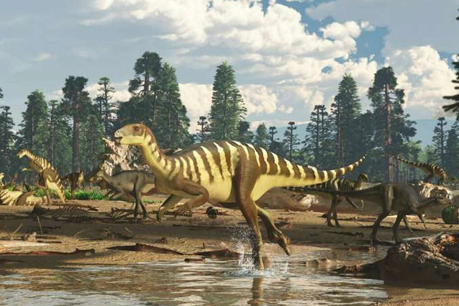 Artist's impression of a Galleonosaurus dorisae herd on a riverbank in the Australian-Antarctic rift valley during the Early Cretaceous, 125 million years ago -  Photo Credit: James Kuether