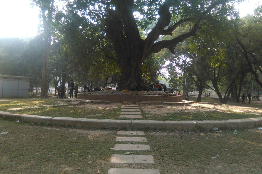 Ramna Park, a place of greenery in the city