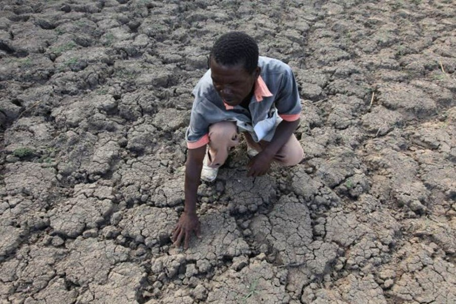 A farmer in Zimbabwe examines a field where crops once grew -  AP