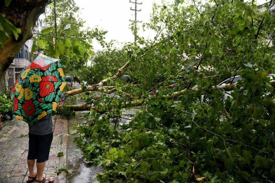 A man holding an umbrella stands near a fallen tree after super typhoon Lekima made landfall in Wenling, Zhejiang province, China August 10, 2019. REUTERS/Stringer