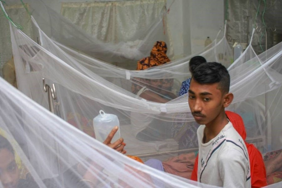 Dengue: Over 1,706 more hospitalised in 24hrs