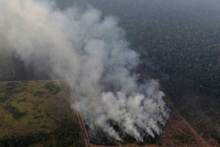 Smoke billows during a fire in an area of the Amazon rainforest near Porto Velho, Rondonia. Reuters