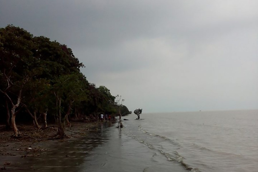 A view of Char Kukri Mukri island, situated in Bhola district. Photo: Social media