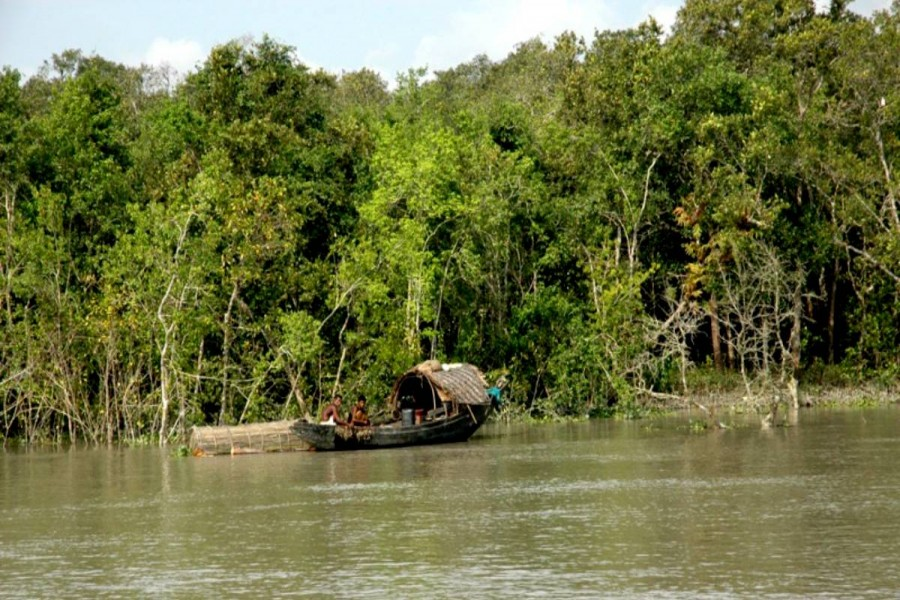 Sunderbans fishermen experience severe hardship over fishing ban