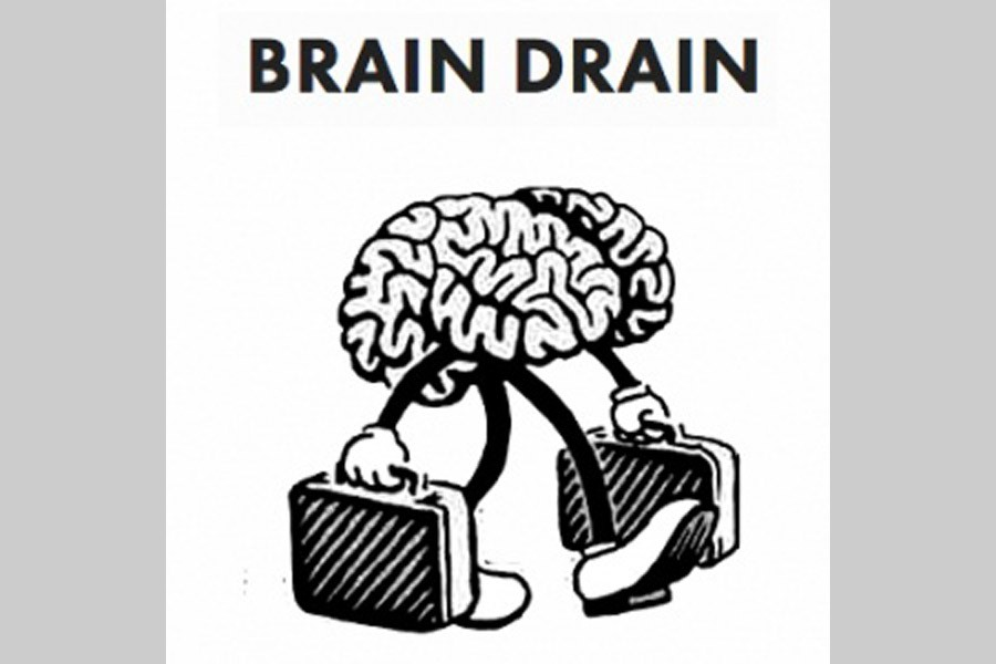 'Brain gain' reversing 'brain drain'