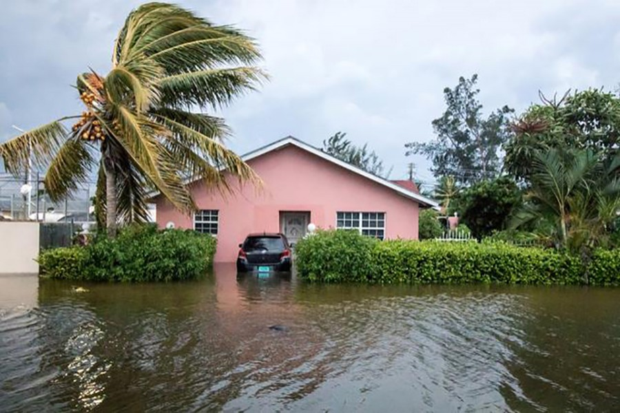 A palm tree bends in the wind next to a flooded street after the effects of Hurricane Dorian arrived in Nassau, Bahamas on September 2, 2019 — Reuters photo