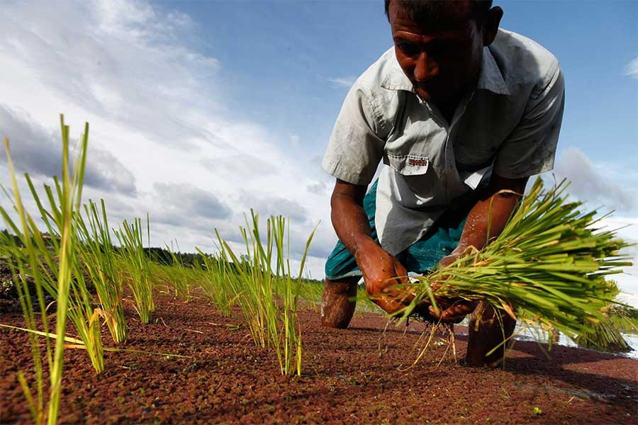 'Farmers to get machineries at subsidised rate from next season'