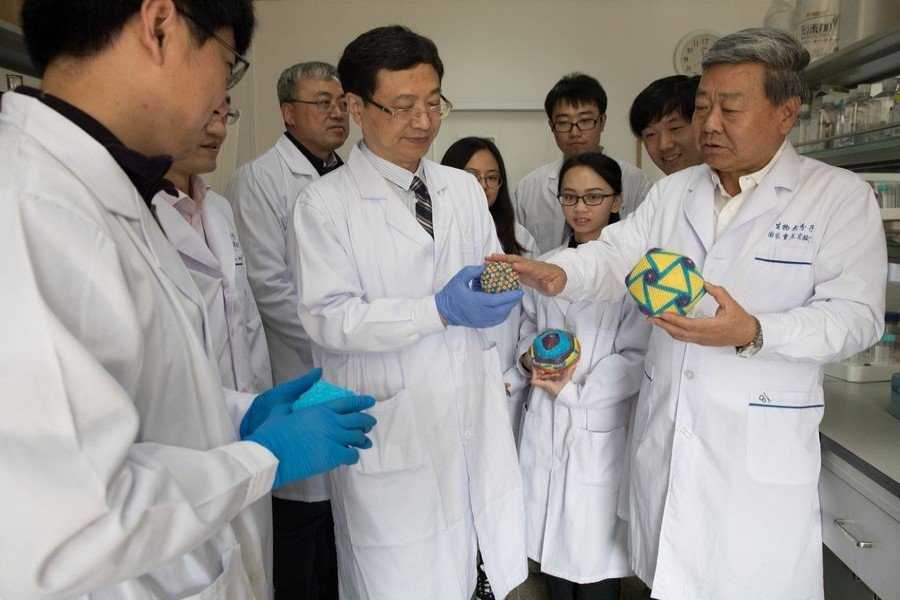 Rao Zihe (front right), Bu Zhigao (front middle), Wang Xiangxi (front left) and other researchers exchange opinions about the structures of the African swine fever virus in the laboratory of the Institute of Biophysics of the Chinese Academy of Sciences, Oct. 18, 2019. (Xinhua/Jin Liwang)