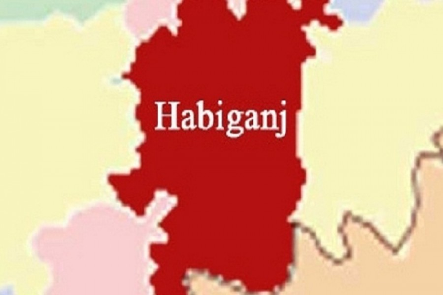 Two killed in Habiganj road accident