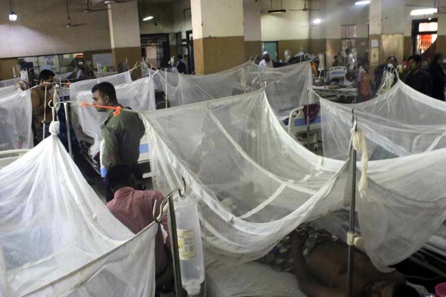 184 new dengue patients hospitalised in 24 hrs