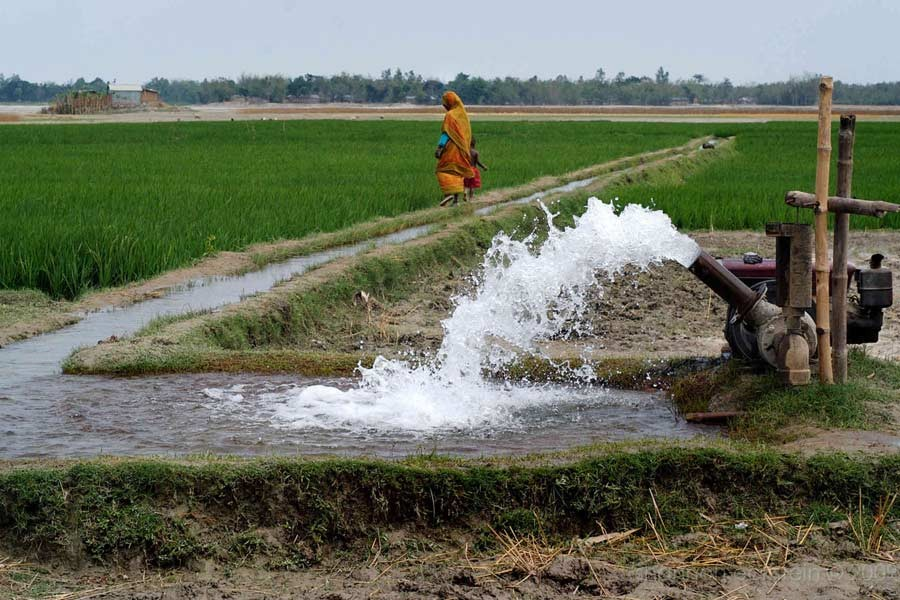 Govt to replace diesel-run irrigation pumps with solar-powered ones