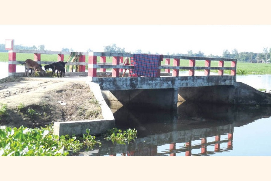 A bridge over the Gozony Beel in the Shagota area of Hatkhali union under Suzanagar upazila in the district lying unused for a long time due to absence of link road for a long time 	— FE Photo