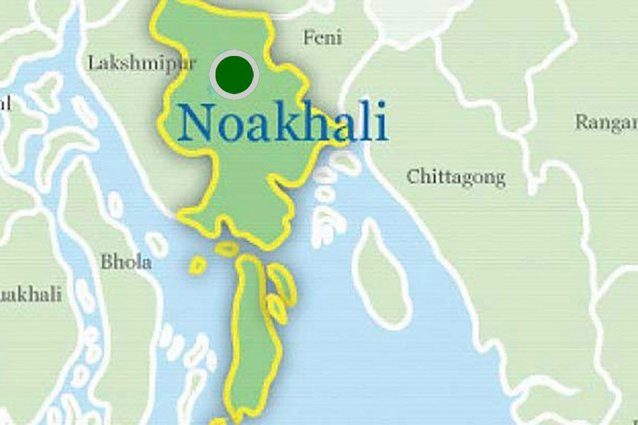 Bus with 50 passengers plunges into pond in Noakhali