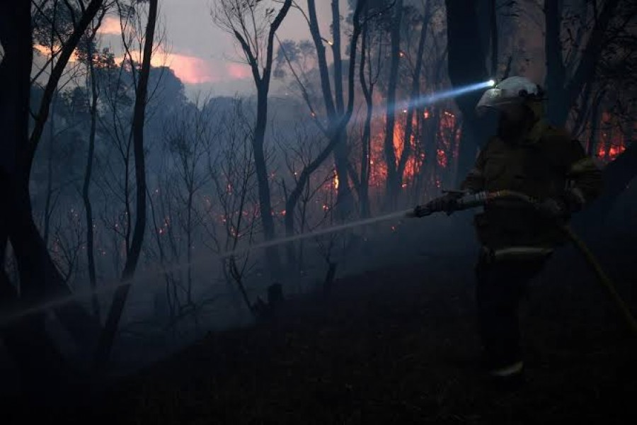 A NSW Rural Fire Service firefighter conducts property protection as a bushfire burns close to homes on Railway Parade in Woodford NSW, Australia, November 8, 2019. AAP Image/Dan Himbrechts/via REUTERS
