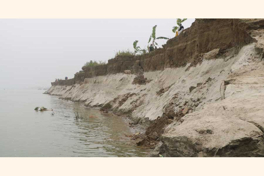 Erosion by the Padma river has taken a serious turn in Goalunda upazila of Rajbari district 	— UNB Photo
