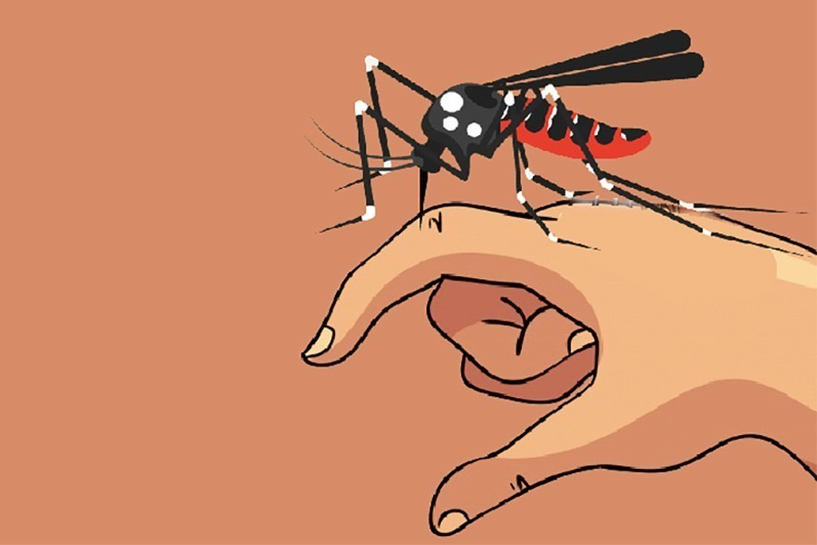 Two new dengue patients admitted in 24hrs