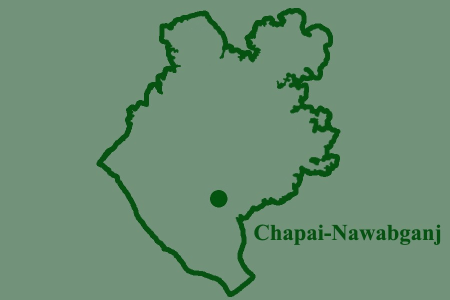 Chapainawabganj road crash kills pedestrian