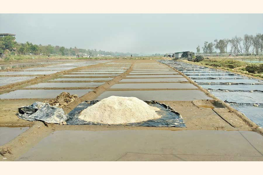 BSCIC urges 7 banks to give loans to salt farmers
