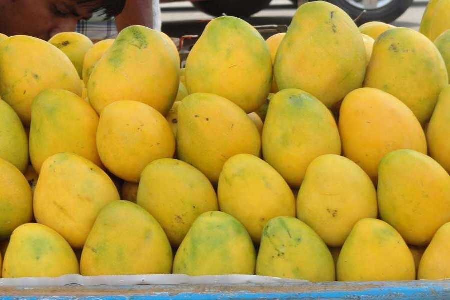 BR to launch special trains for carrying mango